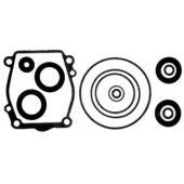 Seal Kit, Lower Unit - Suzuki DT150-DT200 V6