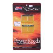Boyesen Reed Kit 701cc
