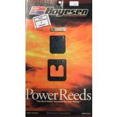 Boyesen Reed Kit - Suzuki DT25-DT30