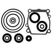 Seal Kit, Lower Unit - Johnson, Evinrude 60-70hp Four Stroke, Suzuki 60-70,90-100
