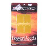 Boyesen Reed Kit 1200cc